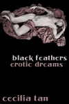 black_feathers_cover_iconsize