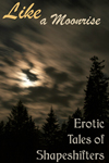 Like A Moonrise: Erotic Tales of Shapeshifters